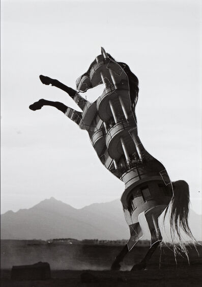 Shannon Bool, 'Horse of Oblivion 7', 2019