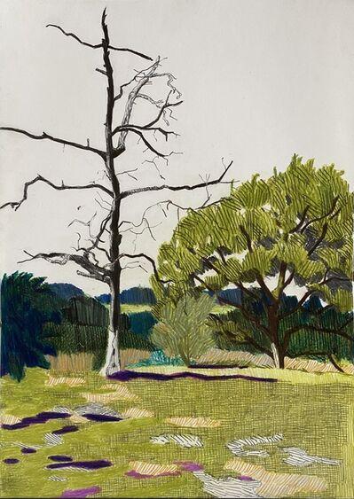 Per Adolfsen, 'The Dead Tree', 2020
