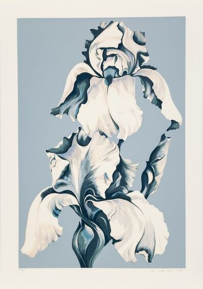 Lowell Nesbitt, 'White Iris on Blue II', 1980
