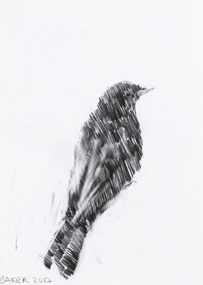 Charming Baker, 'Bird Drawing', 2017