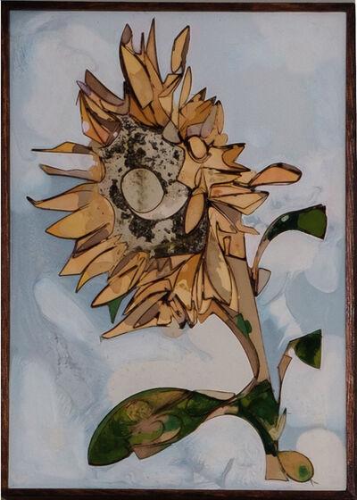 Ugo Schildge, 'Sunflower 38/50', 2020