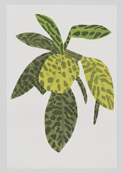 Jonas Wood, 'Green Plant Clipping', 2014