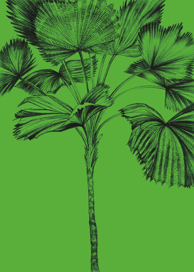 Sandra Kranich, 'Palm Tree Session 2', 2017