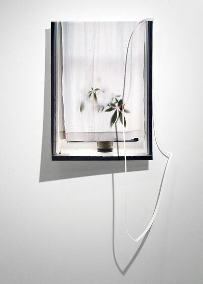 Steven Beckly, 'Crop Window', 2016