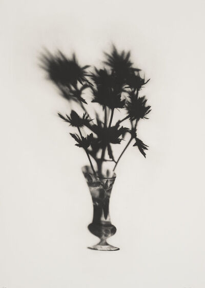 Cornelia Parker, 'Cut Glass and Thistles', 2019