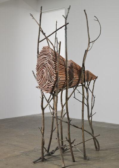 Giuseppe Penone, 'Ombra di terra', 1999