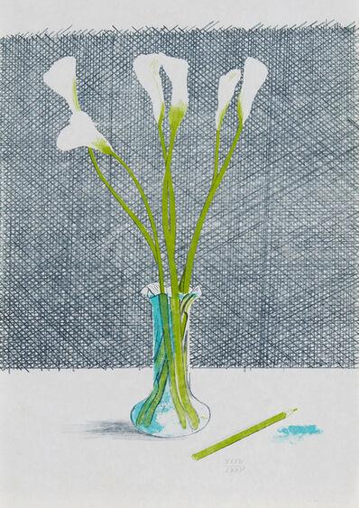 David Hockney, 'Lillies (Still Life)', 1971