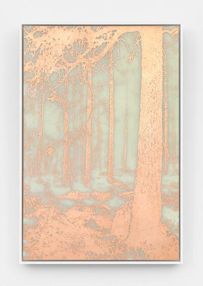 James Hoff, 'Useless Landscape No. 25', 2016