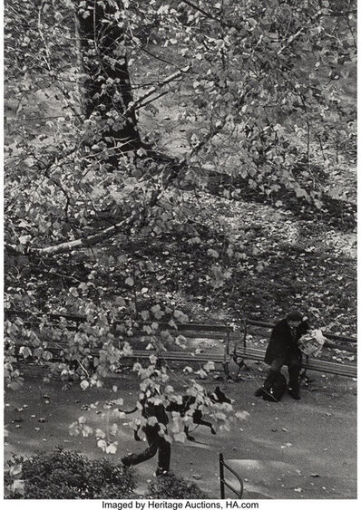 André Kertész, 'Tree and Dog Walk', 1967