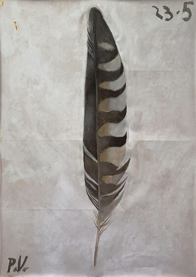 Paolo Ventura, 'Quarantine Diary (Feather, May 23rd)', 2020