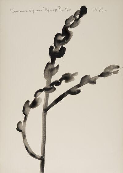 George Bartko, 'Commom Grass', 1989