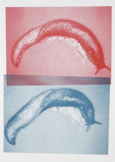 Nicolas Deshayes, 'Untitled', 2012