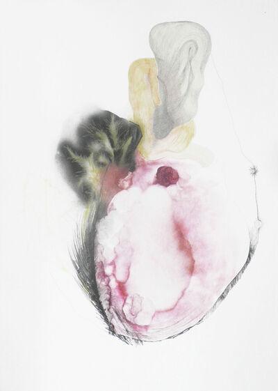 Dorota Buczkowska, 'Ecosystem rysunek kolaż', 2014