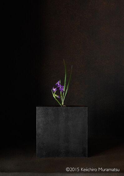 Keiichirô Muramatsu, 'A Stage Iris 5-4', 2015