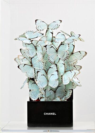 Roman Feral, 'Coffre Chanel Perle', 2019