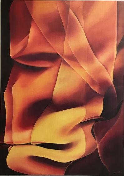 Mehrdad Sadri, 'Animus', 2003