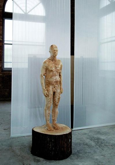 Aron Demetz, 'North Facing', 2013