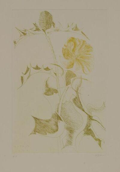 Leonard Baskin, 'Thistle and Yellow Flower Red Flower', 1970