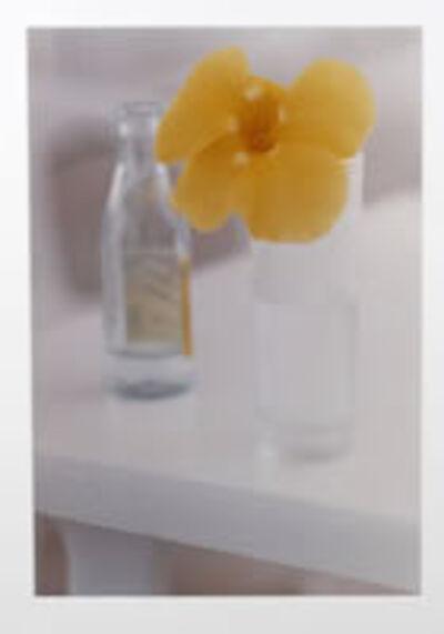 Ralph Gibson, 'Yellow Flowers, St. Bart'