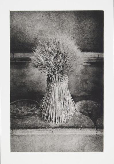 Philip Van Keuren, 'Sheaf', 2016