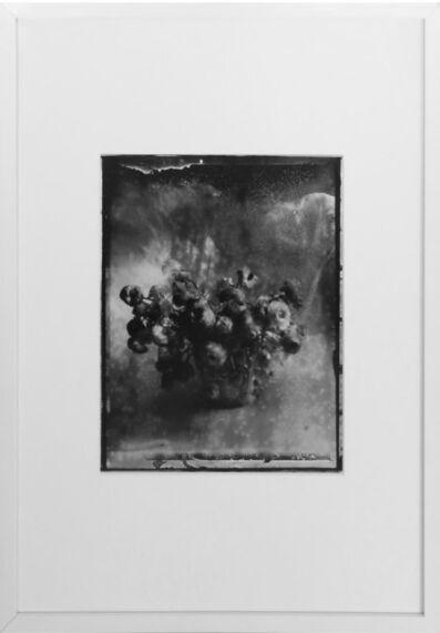 Sarah Moon, 'Nevermind', 1989