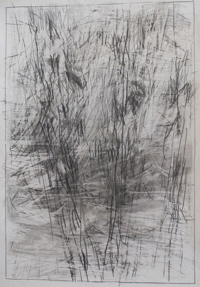 Mario Lobedan, 'Landscape L14', 2014