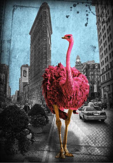 Lars Tunebo, 'Flatrich Ostrich - Red', 2020
