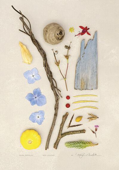 Meghan Crandall, 'The Bees', 2016