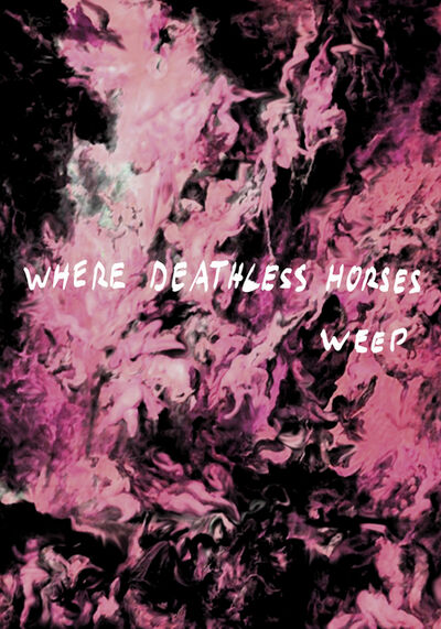 Thomas Feuerstein, 'Where Deathless Horses Wep', 2009
