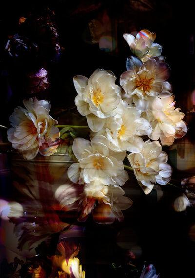 Isabelle Menin, 'Petites Natures #6', 2015