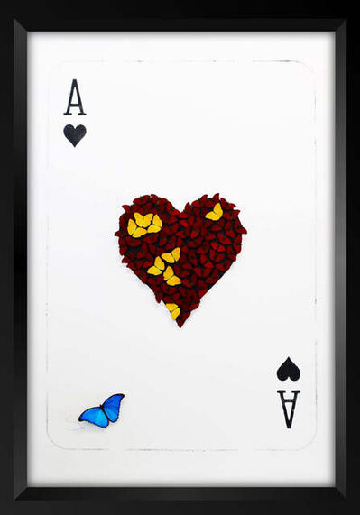 SN, 'The Ace of Hearts', 2017