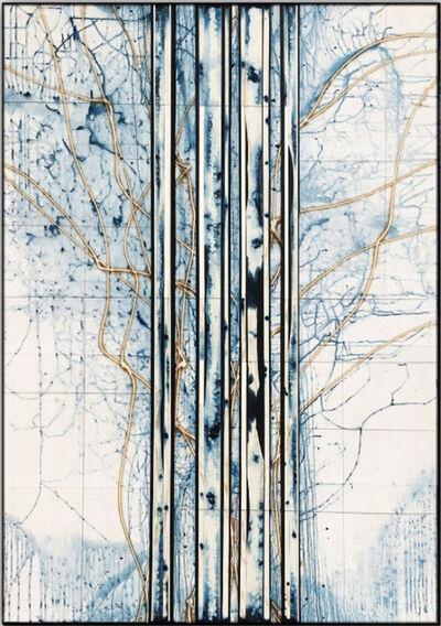 Michael Kessler, 'Revealed (9)'