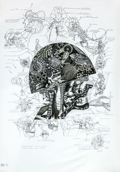 Megasoma Mars, 'Self Portrait ', 2012