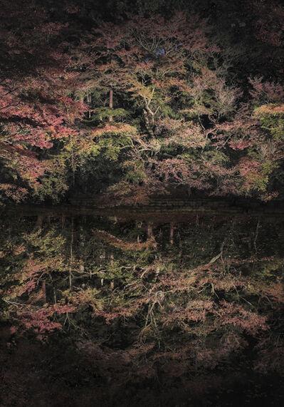 Ori Gersht, 'Floating Tree', 2016
