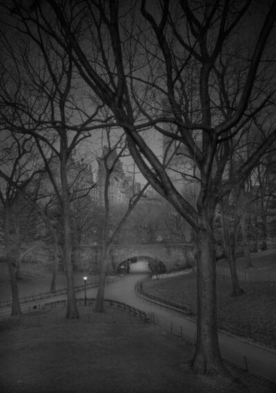 Michael Massaia, 'Zoo Entrance - Pre-Dawn - Deep In A Dream - Central Park', 2016