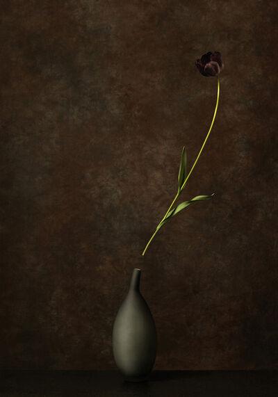 Marie Cecile Thijs, 'Black Jack', 2014
