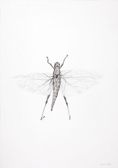 Eva Gerd, 'Sin título', 2007