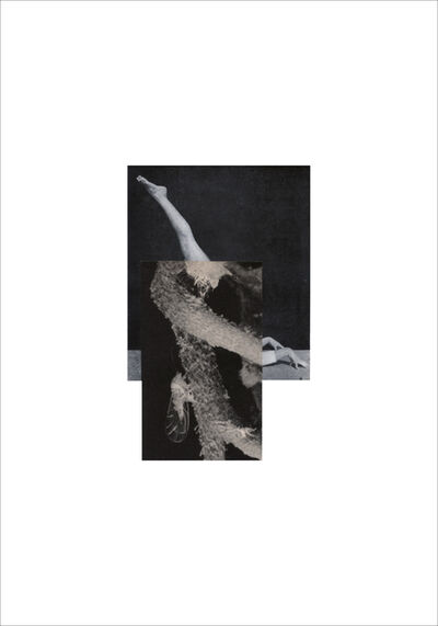 Cecilia Bonilla, 'Between Animals and Trees 4', 2020
