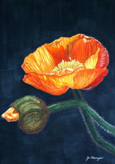 Josie Mengai, 'Orange Poppies', 2019