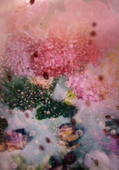 Isabelle Menin, 'Petites Natures #25', 2015