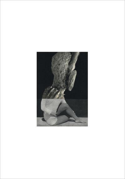 Cecilia Bonilla, 'Between Animals and Trees 5', 2020