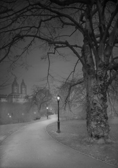 Michael Massaia, 'Deep In A Dream - Central Park - West Side Path & San Remo - Pre-Dawn', 2016