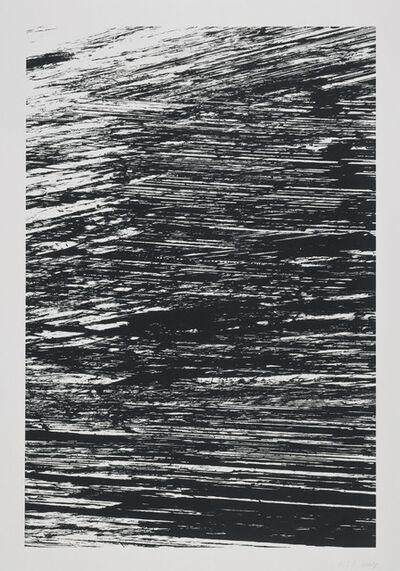 Ellsworth Kelly, 'The Nile', 2005