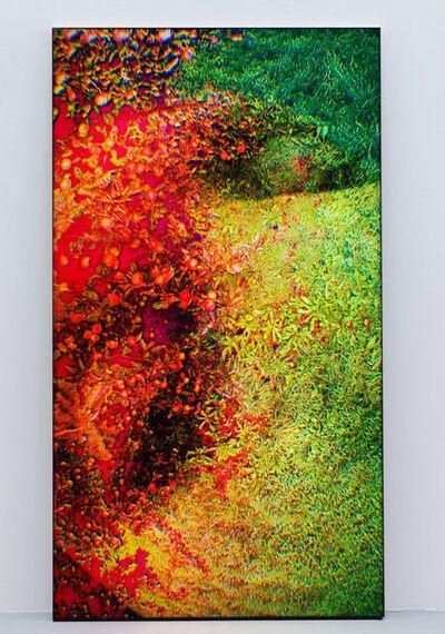 Pipilotti Rist, 'Untitled', 2009