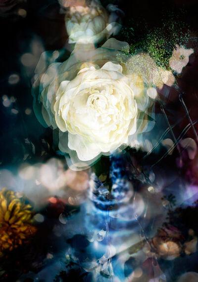 Isabelle Menin, 'Petites Natures #23', 2015