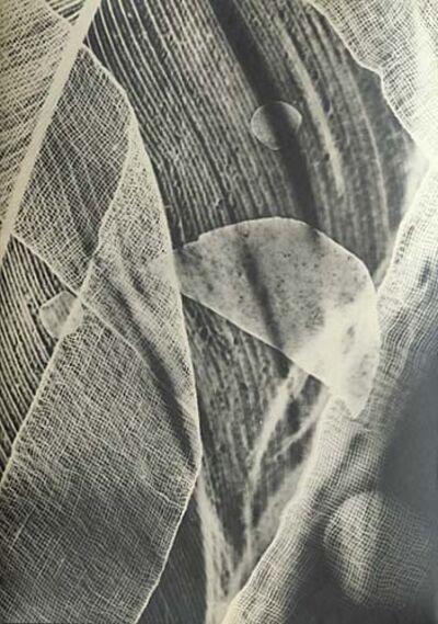 Tihamer Gyarmathy, 'Untitled (Luminogramme)', 1955c/1955c
