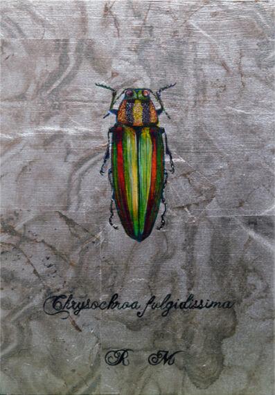 Reiko Megro, 'Chrysochroa fulgidissima', 2019