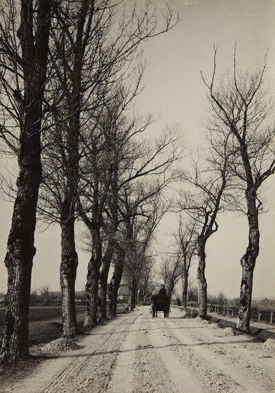 Alfred Stieglitz, 'November Days', 1887