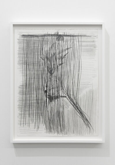 Derek Liddington, 'Plant study behind closed window and shut blinds', 2015