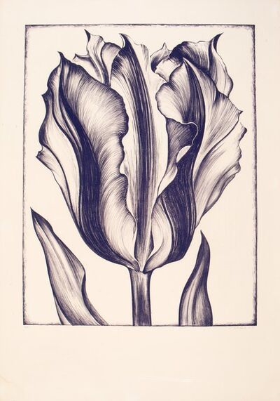Lowell Nesbitt, 'Tulip', 1971